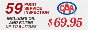59 Point Inspection Special!